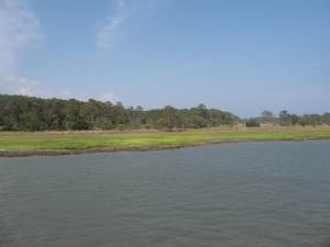 Sea Island Shoreline